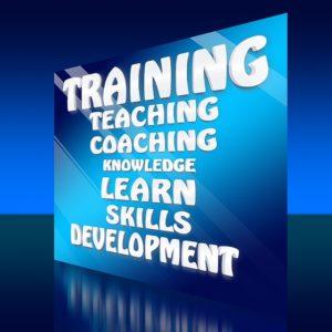 Scot Rourke Business Coaching